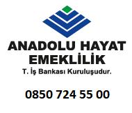 Anadolu Hayat Emeklilik Sigorta